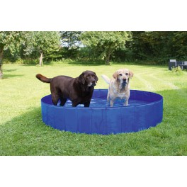 piscine pour chien pet elevage. Black Bedroom Furniture Sets. Home Design Ideas