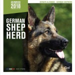 Calendrier 2018 Bergers Allemand Edition Affixe